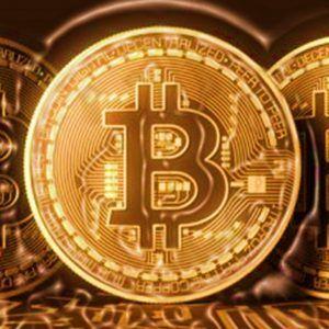 Bitcoins: Währung oder Tulpe?